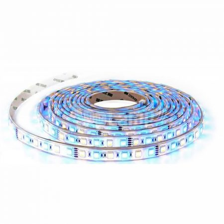 LED SZALAG 5050 - 60 LED/M RGB+WW - PC2553